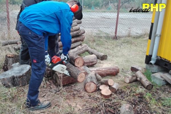 Praktyczne szkolenie na pilarke.