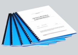 Ocena ryzyka zawodowego na stanowisku Obsługa zszywarki